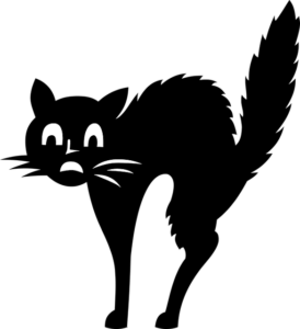 a black cat wants to overcome stage fright